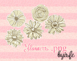 Png Flowers by Isfe