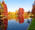 Autumn_scape by victor23081981