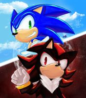 Sonic and Shadow by chickenoverlord