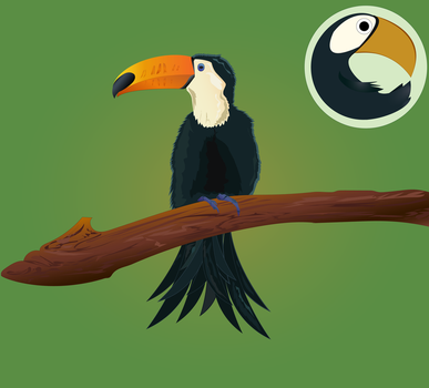 Tou Toucan! by raychuhll