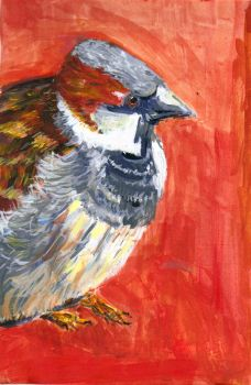 bird acrylic study by swimboy5002