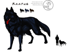 Character sheets: Kaarne by SaQe