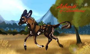 Ashanti   Hind   Silverthorne Outcast by Wistfully-Dreaming
