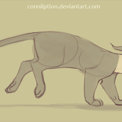 Runnin Cat by conniiption