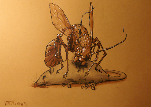 13 - Close up of a Bug by Virensere