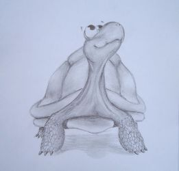 turtle by Zaza-Art