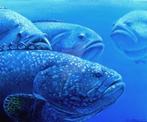 Group of Groupers by ART-fromthe-HEART