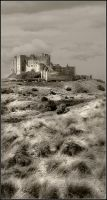 Bamburgh Castle 3 by newcastlemale