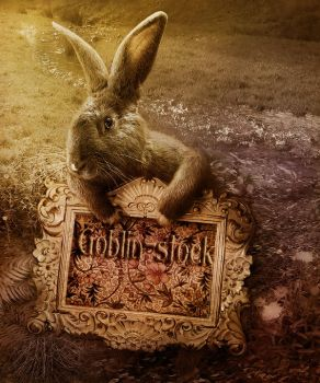 APRIL ID Goblin-stock by GoblinStock