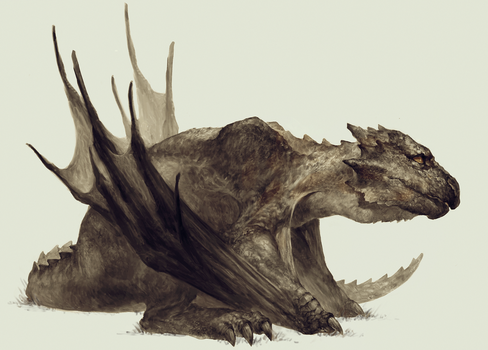Young wyvern by AriadneZ