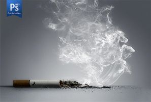 Smoking Horse by Jo3Low-Design