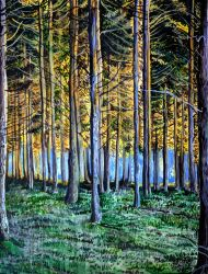Yellow Lit Forest by cirruscastle