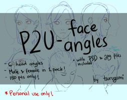 P2U - Face Angles by tsurugami