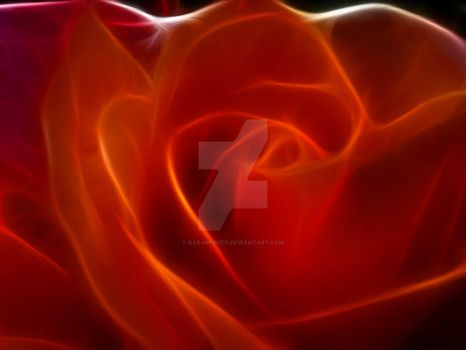 Digital Red Rose by Kae-Infinity