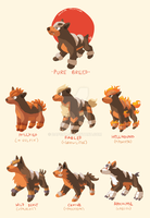 Houndour Variations by dapcat