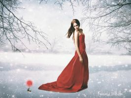 WINTER ROSE by KerensaW