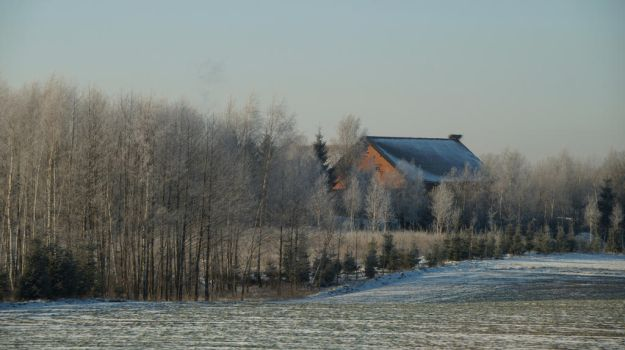 Winter Landscape3 by BW-Neelly