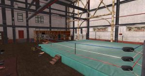 DoA 5 Gym/Sweat stage scene by Chrissy-Tee