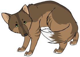 Brown Wolf by Animalible