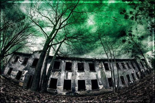 The Haunted House by Suselsahne