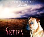 Setiva by jahnalee