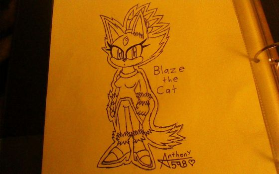 .:Blaze the Cat Sketch:. by Anthony598