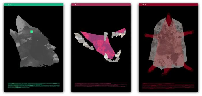 The Disappearance Of Wolves // posters by Zele-Rebus