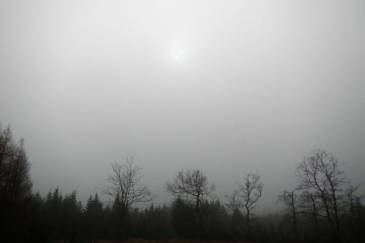 Solar eclipse behind fog by Astroandre