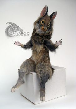 Cottontail Rabbit Room Guardian by AnyaBoz