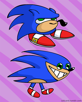Two Sonics by Calicard