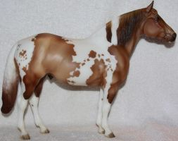 Breyer Champagne Toast Stock by Lovely-DreamCatcher