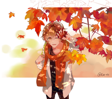 The Falling Leaves Look Like Stars by Kae-ro