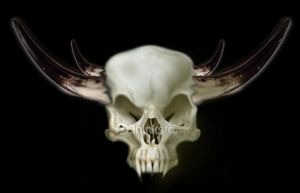 Demon skull photo-manipulation by MJBivouac