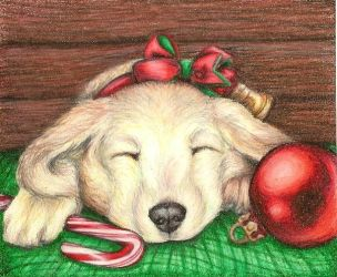 Christmas puppy by penguinluv4ever