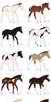 Paint Foal Adoptables Batch - CLOSED by Anonymous-Shrew