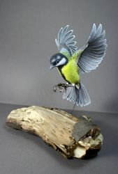 Paper and wood great tit sculpture finished by ZackMclaughlin