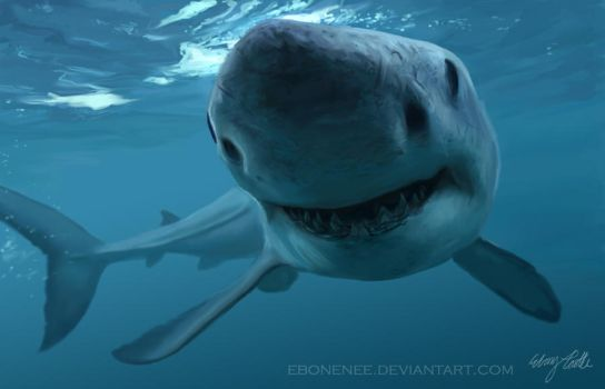 What a Great White Smile by Ebonenee