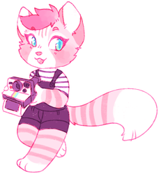 AESTHETIC ADOPT REVEAL: snap a picture kitty by irlnya