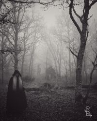 The path by Persephoneblackdove