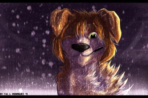 rain with snow by Tai-L-RodRigueZ