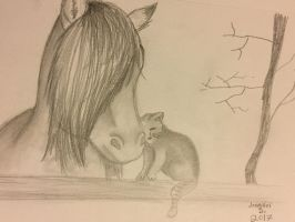 Horse and Cat by Pinkwolfly