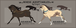 Adopt Arabian horses - Auction [OPEN] by VanyCat