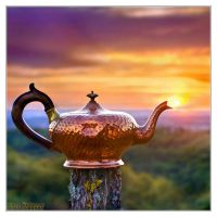 The Magic Lamp by DianePhotos