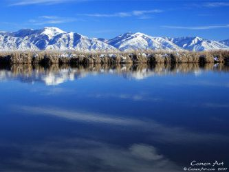Blue Reflection by CanenArt
