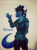 Blizzard by CrazyDragon2000