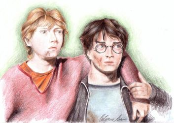 Harry and Ron by Hermionina