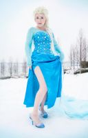 Elsa - Here I Stand by Nyxiie