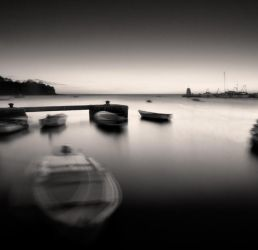 Night Moves... by denis2