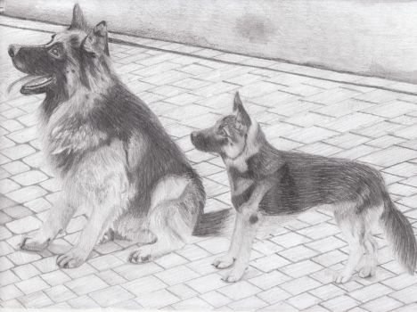Dogs. by Metallica5477