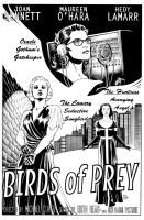 Birds of Prey Noir Film Poster by craigcermak